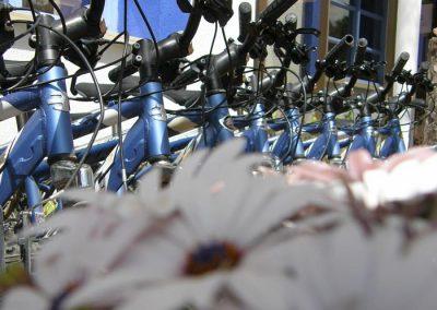 Alquiler de bicicletas en Ruidera