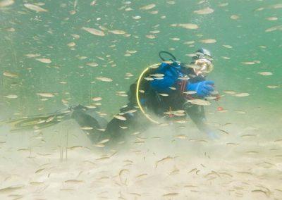 Buceo en lagunas de Ruidera