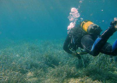 Buceo en Costa Cálida