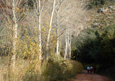Rutas de senderismo en Lagunas de Ruidera